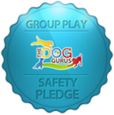 Group-play-safety-pledge_a